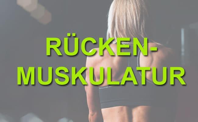 Rückenmuskulatur aufbauen - Gezielte Rückenübungen für deine Gesundheit